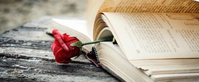 romancenovelcur